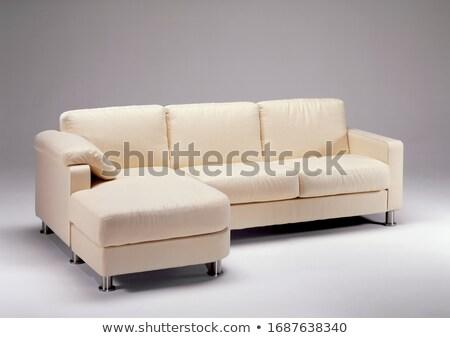 диван · текстуры · дизайна · домой · мебель - Сток-фото © artvitdiz