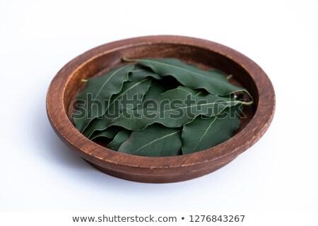 aszalt · babér · levél · fa · háttér · zöld - stock fotó © boroda