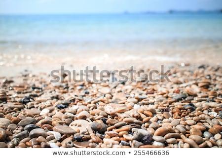 ぬれた ビーチ 石 カラフル 湖 ミシガン州 ストックフォト © Kenneth_Keifer