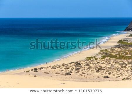 Sotavento beach Stock photo © Marcogovel