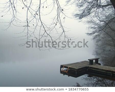 Brumeux atterrissage jet lumières hiver brouillard Photo stock © bobhackett