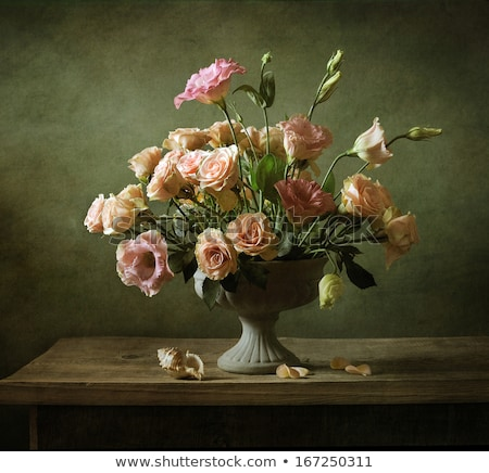 Amor rosa folha vermelho vintage antigo Foto stock © Photofreak