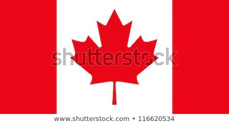 kanada · bayrağı · harita · Kanada · bayrak · üç · boyutlu · vermek - stok fotoğraf © marinini
