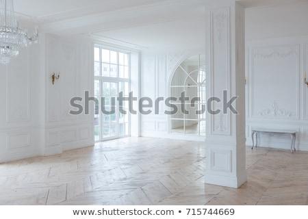 Luksusowe barokowy wnętrza scena vintage pałac Zdjęcia stock © ifeelstock