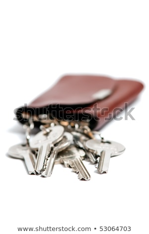 Keys in a brown leather case isolated against white background,  stock photo © deymos