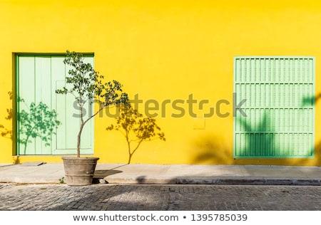 Amarelo parede belo natureza projeto fundo Foto stock © Gloszilla