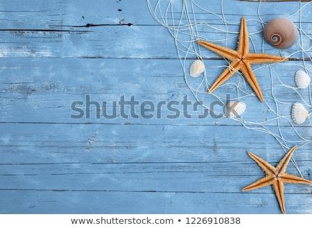 セーリング ボート 砂 装飾 クローズアップ ストックフォト © juniart