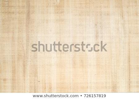 egyptian papyrus stock photo © masamima