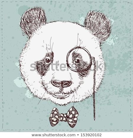 Kroki panda şapka bıyık vektör bağbozumu Stok fotoğraf © kali