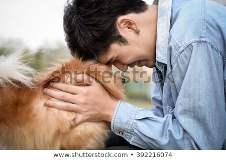 собака собственность торговых собаки мяча животного Сток-фото © monkey_business