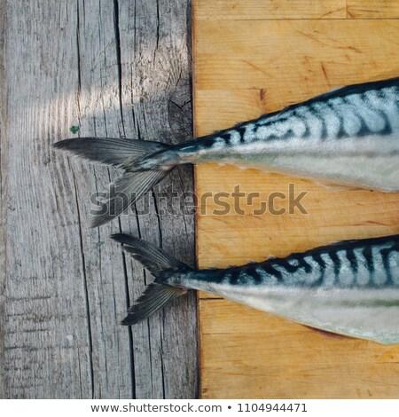 Close-up of raw mackerel Stock photo © amok