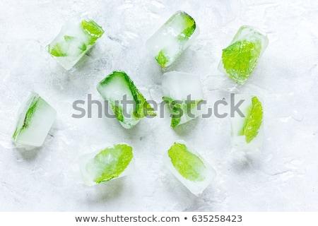 groene · mint · waterdruppels · witte · water · voedsel - stockfoto © givaga
