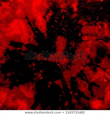 Rood stropdas Blauw shirt witte business Stockfoto © wime