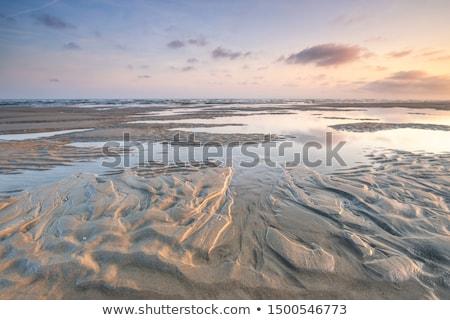 Dutch wadden island Terschelling Stock photo © ivonnewierink