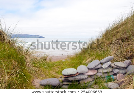 view of dunes at the maharees Stock photo © morrbyte