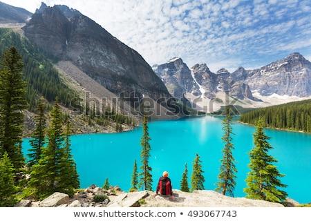 Coloré montagnes au-dessus alpine lac glacier Photo stock © wildnerdpix