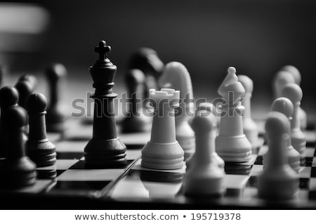 schaakstukken · witte · schaakbord · ondiep · veld · rij - stockfoto © wavebreak_media