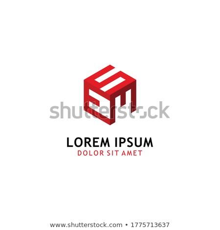 Rojo símbolo vector icono Foto stock © blaskorizov