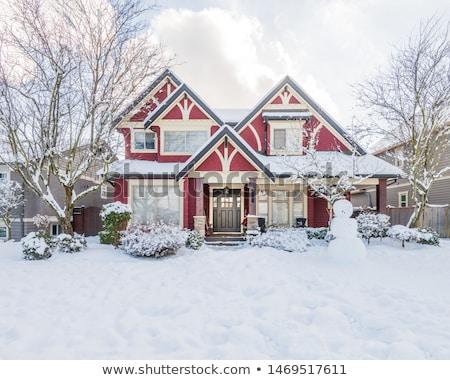 Mieszkaniowy sąsiedztwo zimą widoku łańcucha link Zdjęcia stock © PixelsAway