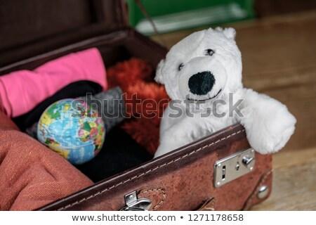 Jegesmedve dől földgömb izolált illusztráció világ Stock fotó © carbouval