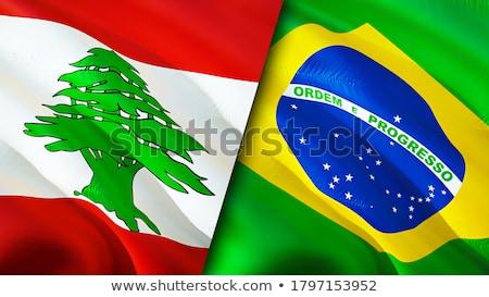 Бразилия Ливан флагами головоломки изолированный белый Сток-фото © Istanbul2009