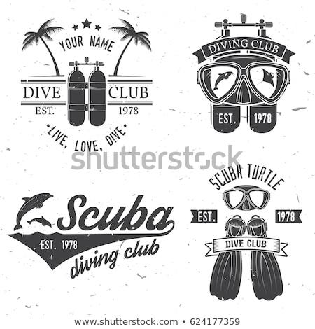 イルカ スキューバダイビング マスク 実例 魚 ストックフォト © adrenalina