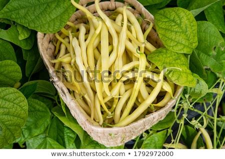 çalı fasulye gıda Stok fotoğraf © fotogal