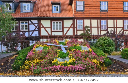 view to old medieval town of quedlinburg stock photo © meinzahn