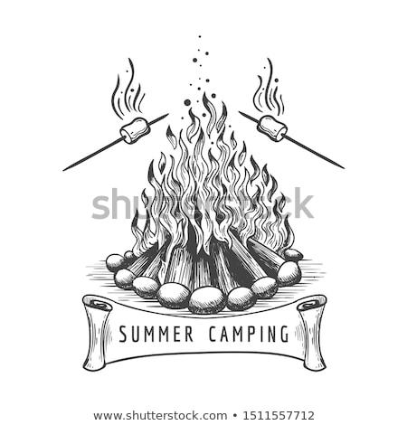 Marshmallow roasted on wooden stick line icon. Stock photo © RAStudio