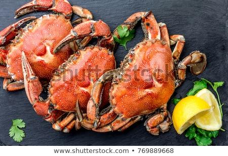 Roşu rege crab carne servit alb Imagine de stoc © nasonov