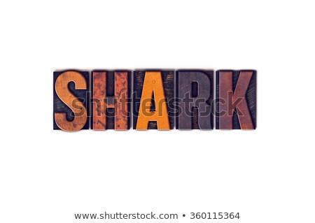 акула изолированный тип слово написанный Сток-фото © enterlinedesign