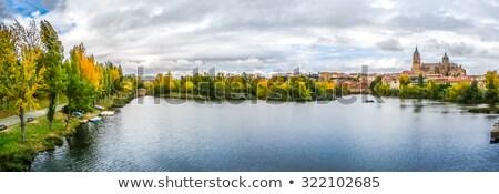 исторический · центр · Испания · мнение · собора · город - Сток-фото © photooiasson