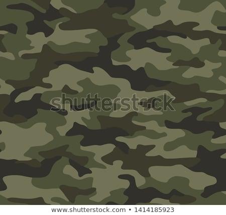 Belleza ejército mujer hermosa sexy uniforme cartel Foto stock © seenad