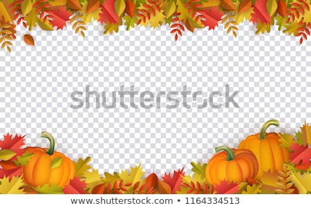 autumn gourd decorations on foliage oak leaves stock photo © tab62