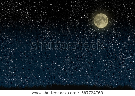 Background design with fullmoon and stars Stock photo © bluering
