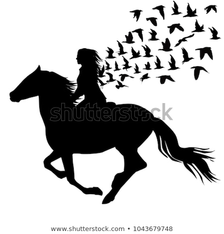 Stockfoto: White Horse With Flying Birds Vector