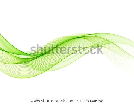 Soyut yeşil dalgalar kurumsal vektör dizayn Stok fotoğraf © saicle