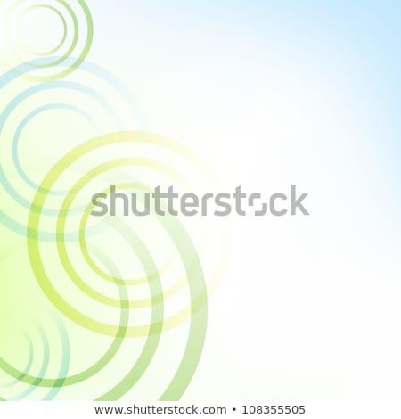 abstract · zachte · groene · Blauw · golven · vector - stockfoto © frimufilms