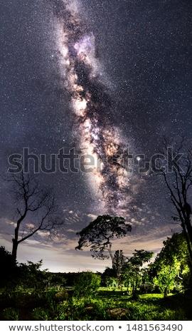 landscape under the milky way stock photo © maxmitzu