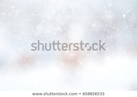 Grigio bokeh neve vacanze scintilla bianco nero Foto d'archivio © romvo