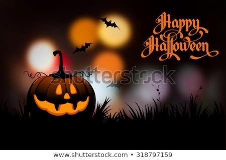 feliz · halloween · cartaz · texto · abóbora · vetor - foto stock © sonya_illustrations