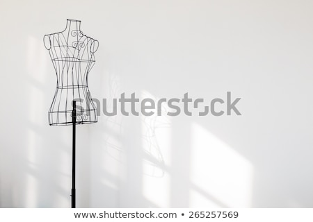 Mannequin with cloth in the white room  Stock photo © dashapetrenko