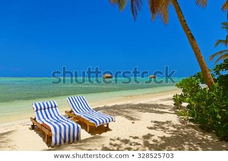 サンベッド ビーチ ペア 海岸線 2 チェア ストックフォト © robuart