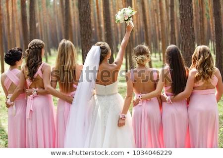 Novia rosa vestidos boda día Foto stock © ruslanshramko