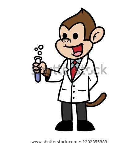Rajz csimpánz tanár illusztráció sapka oktatás Stock fotó © cthoman