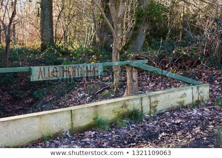Carved wooden sign for Allotments Way in a wood Stock photo © sarahdoow