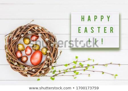 variété · objets · printemps · blanche · fleur - photo stock © artsvitlyna