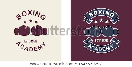 Stock photo: Color vintage boxing club banner