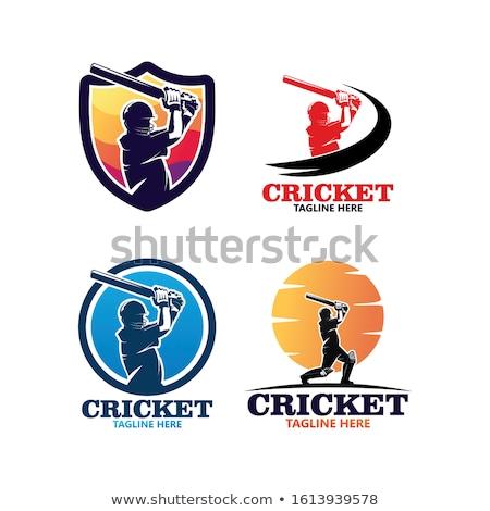 крикет · мяча · огня · пылающий · Flying · воздуха - Сток-фото © angelp