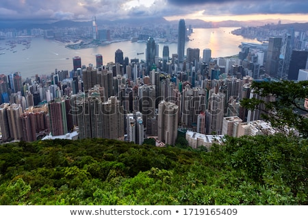 Landscape on forest in Hong Kong Stock photo © Juhku